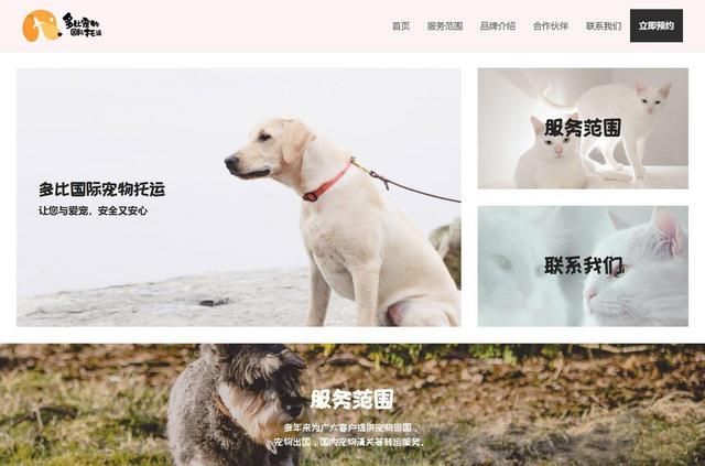 網頁設計案例分析:如何做出美觀的網頁